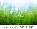 Lush Green Grass Background...