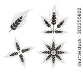 ears of wheat set isolated on... | Shutterstock . vector #303250802