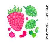 hand painted  raspberry... | Shutterstock . vector #303433835
