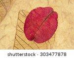 Pink Petal And Leaf Pressed On...