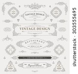 set of vintage decorations... | Shutterstock .eps vector #303555695