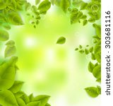 realistic leaves background... | Shutterstock .eps vector #303681116