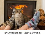 Cat By The Fireplace In The...