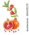 Realistic Botanic Illustration...