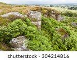 view of shaftoe craggs. ... | Shutterstock . vector #304214816