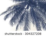 Coconut Tree In Black And Whit...