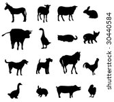 livestock and poultry | Shutterstock .eps vector #30440584