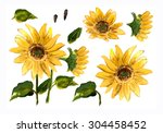 the pattern of blooming yellow... | Shutterstock . vector #304458452