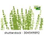silhouette nettle. vector | Shutterstock .eps vector #304549892