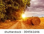 sunny countryside road in july. ... | Shutterstock . vector #304561646
