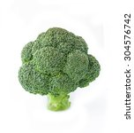 big tree shape of fresh... | Shutterstock . vector #304576742