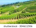 vinery farm living in green... | Shutterstock . vector #304611506