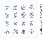 plant and sprout growing icons... | Shutterstock .eps vector #304662722