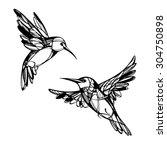 tropical birds. vector set. | Shutterstock .eps vector #304750898