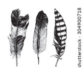 3 hand drawn feathers on white... | Shutterstock .eps vector #304900718