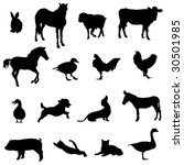 livestock and poultry | Shutterstock .eps vector #30501985