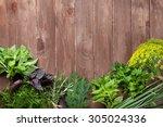 fresh garden herbs on wooden... | Shutterstock . vector #305024336