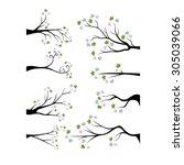 decorative branch tree... | Shutterstock .eps vector #305039066