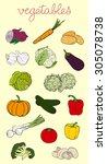 vegetables set | Shutterstock .eps vector #305078738