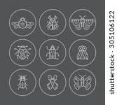 set of bug line vector icons.... | Shutterstock .eps vector #305106122