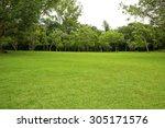 garden  backyard   Shutterstock . vector #305171576