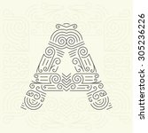 vector mono line style... | Shutterstock .eps vector #305236226