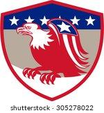 illustration of a american bald ... | Shutterstock .eps vector #305278022
