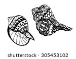 hand drawn seashell. isolated... | Shutterstock . vector #305453102