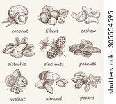 nuts set | Shutterstock .eps vector #305554595