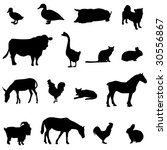 livestock and poultry | Shutterstock .eps vector #30556867