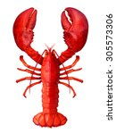 Lobster Isolated On A White...