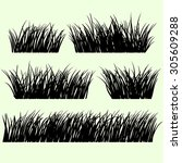 hand drawn grass set. grass... | Shutterstock .eps vector #305609288