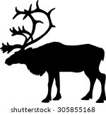 black silhouette of a deer ... | Shutterstock . vector #305855168
