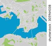 hong kong vector map ultra... | Shutterstock .eps vector #305964338