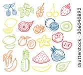 fruits set colored | Shutterstock .eps vector #306040892