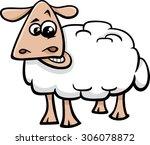 cartoon illustration of sheep... | Shutterstock . vector #306078872