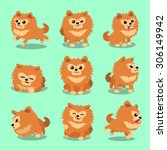 Cartoon Character Pomeranian...