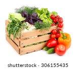 fresh ripe vegetables in a... | Shutterstock . vector #306155435