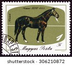 Small photo of HUNGARY - CIRCA 1985: A stamp printed in Hungary issued for the bicentenary of horsebreeding at Mezohegyes shows Nonius XXXVI, 1883, circa 1985.