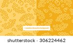 2 seamless decorative... | Shutterstock .eps vector #306224462