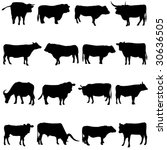 cattle from all over the world   Shutterstock .eps vector #30636505