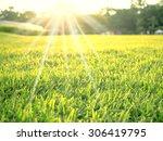 Soft Focus On Green Cutting...