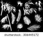 illustration with branches... | Shutterstock .eps vector #306445172