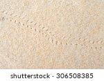 Hermit Crab Footprints On The...
