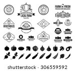 vector vegetables logos  label... | Shutterstock .eps vector #306559592