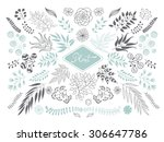 collection of plants and... | Shutterstock .eps vector #306647786