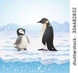 cartoon penguins on icy... | Shutterstock .eps vector #306682832