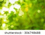 bokeh light from the sun... | Shutterstock . vector #306748688