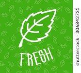 fresh green mint leaves... | Shutterstock .eps vector #306842735