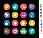 drinks icons universal set for... | Shutterstock . vector #306880826